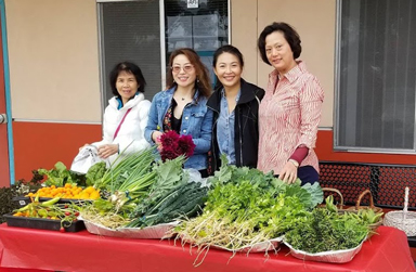 Four women behind a table laden with fresh produce