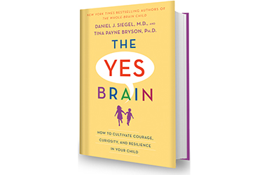 The Yes Brain Book Jacket Cover
